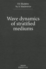 Wave dynamics of stratified mediums